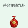 , 龙腾九州